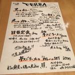 照 TERRA -
