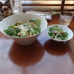 トゥ・ザ・ハーブズ - 大食らいなのでサラダ追加でセットサラダとダブル
