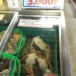 44436001 - 贅沢な海鮮盛りですね