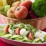 レストランせんごく - せんごくサラダ(チーズ豆腐のせ)
