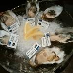 44462468 - 【2015.11.14(土)】味くらべ牡蠣盛り合わせ(国産6種+外国6種)@7,300