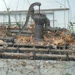 蕎麦・酒處 麦屋 - 朽ち果てた井戸。何か出そう…ヒュ~、ドロドロ~…