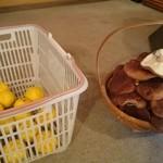 アンジュ - 帰り際に椎茸と柚子を分けてくれました