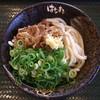 はなまるうどん - 料理写真:牛肉おろしぶっかけ冷 中(おろし・レモン抜き)