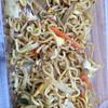 ニューカトマンズキッチン - 料理写真:ネパール焼きそば