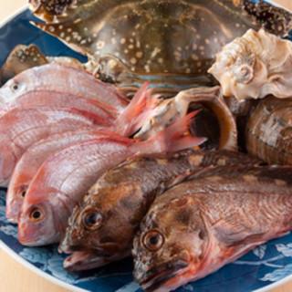 宇和島の海と山の食材をどうぞ召し上がれ!