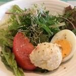 チェスティーノ - 料理写真:サラダ