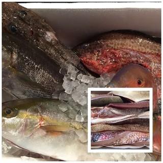 全国の漁師さんから届く地元でしか食べられ無いお造り!