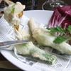 トラットリア デル パチョッコーネ - 料理写真:花ズッキーニのフリット