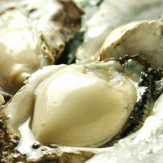 ここでしか食べられない厚岸直送『ゴリラ牡蠣』