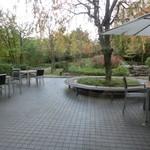 ウィラーエクスプレスカフェ - テラス席 スカイビルの庭園内が見えます