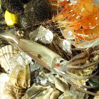抜群の鮮度を誇る鮮魚