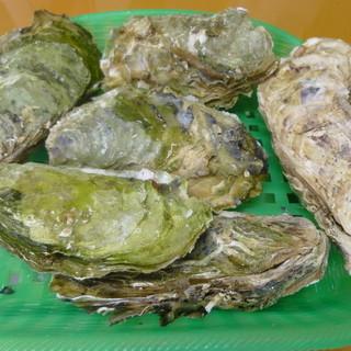 三陸岩手・山田町の新鮮で自慢の牡蠣が一盛り1,200円!!