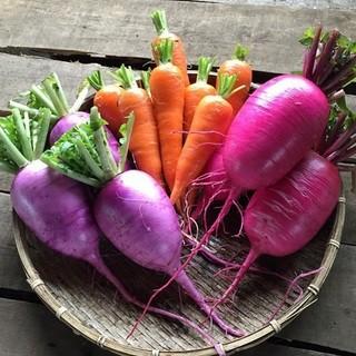 農家直結だから味わえる野菜の美味しさ楽しさをお届けします。