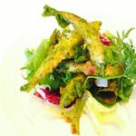 ピーニャ アルテッツア - 前菜 キビナゴのフリット