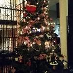 ジュリアーノ - クリスマスツリー2015