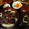 Unaginochiyokou - 料理写真:うな丼山@2,000