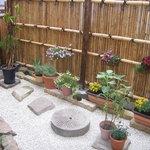道灌かがり - 店内から見える庭のお写真