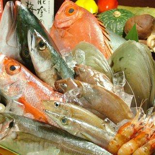 北陸・金沢は魚処、海が近けりゃ魚も旨い!