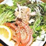 九州郷土料理・炭火やきとり かしわ舎 - 人気メニュー 「かしわ舎サラダ」