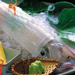 別府 北浜海道 - ヤリイカ活造りです。透明感があり甘~く美味しいです!