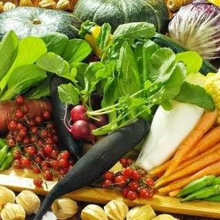産地直送の蔵王野菜