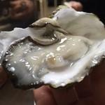 カキ小屋フィーバー - 生牡蠣✨