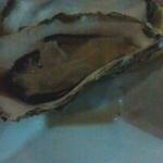 45217428 - 牡蠣のオーブン焼き 380円