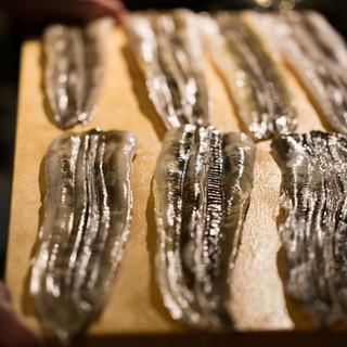 淡路島直送の釣り漁法と底引き網でとれた新鮮な穴子を皆さまに。