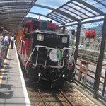 仙人掌 - トロッコ列車