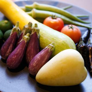 【素材にこだわる】農園からのお野菜たち