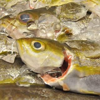 魚を食べたいときは選べば間違いなし!それが、「大乃助」です!