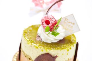 Pine Tree Bless - Japanese cake.