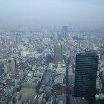 新宿三井クラブ - 54階からの眺め