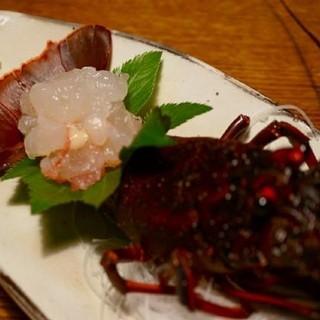 民宿 かいとく丸 - 料理写真:伊勢エビのお刺身