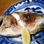 民宿 かいとく丸 - 鯛の塩焼き