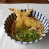 Heiwashokudougarufu - 料理写真:えび天うどん