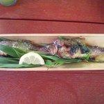 Chikusen - 鮎塩焼き