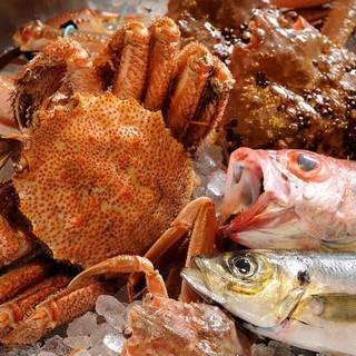 日本海で揚がったばかりの新鮮な海の幸を堪能