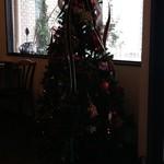 ピオッポ - クリスマスツリー:そんな季節です