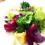 45491487 - 前菜サラダ(^○^)