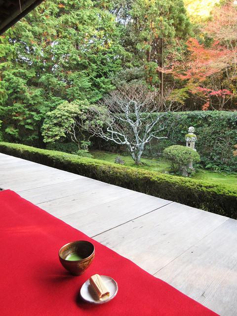 桂春院 - 抹茶と真如の庭