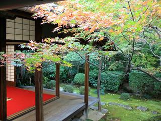 桂春院 - 「侘の庭」と小さな書院