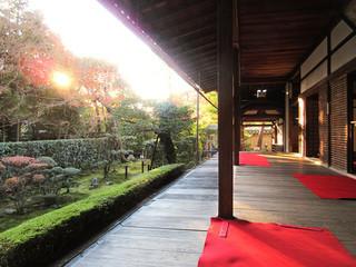 桂春院 - 一番広い「真如の庭」