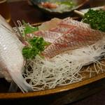 45519919 - 2015/11/28   差し入れのお魚〜〜