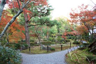 等持院 - 庭園を散策。心字池のある東苑