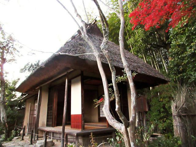 等持院 - 庭園を散策途中の小高い場所。茶室「清漣亭(せいれんてい)」