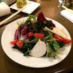 45530398 - 河北町野菜サラダ