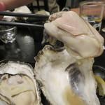 45530516 - 蒸し牡蠣:北海道厚岸産のながえもん、佐賀県竹崎産2