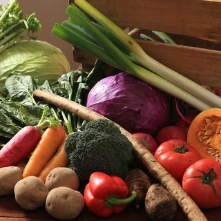 ◎◎富士宮や箱根西麓から届く新鮮なこだわりの有機野菜◎◎